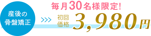 初回特別価格 3,980円